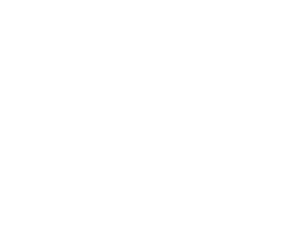 Danny Vincent Smith Retina Logo